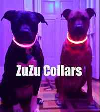 XL Pink LED Dog Collar - Dog Visibility, Light-up Puppy Tags, Safety Collar