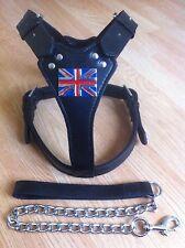 Staffordshire Bull Terrier Staff Staffie, Staffy Leather Harness (Union Jack)