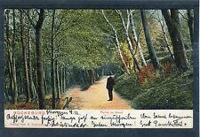 Ansichtskarte Bückeburg Partie am Haarl - 00708