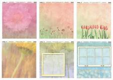 Twelveby12 Heavyweight SCRAPBOOK documenti 12x12 finestra giardino / Colore Fiore 6 fogli