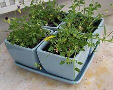 "Set Of 4 Ceramic Light Blue 5"" Square Planters With Saucer Flower Pots"