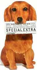 Dachshund Birthday Card Dog with Newspaper Birthday Card 3d