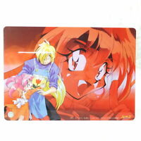 *SH0276 Japan Anime Shitajiki Pencil Board Slayers