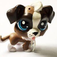 Littlest Pet Shop LPS Rare Animal Brown Puppy Dog Blue Eyes Figure Hot Baby Toy