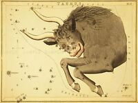 PAINTINGS DRAWING STAR MAP TAURUS BULL CONSTELLATION ART POSTER PRINT LV3142