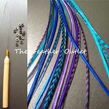 Feathers Hair Extensions Kit Lot 10 Grizzly long XL blue Purple COOLS KIT