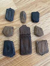 Florida Fossil High Quality Giant Armadillo Scutes