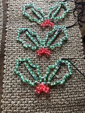 X3 Holly Rope Lights Silhouette