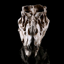 T-Rex dinosaur Specimen Dinosaures Replica Skull Home Collection