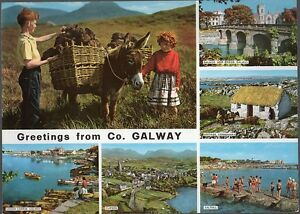 Vintage 1960's Ireland Giant Postcard - Greetings From Co. Galway