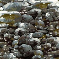 Fat Quarter Just Rocks Cotton Quilting Fabric Michael Miller