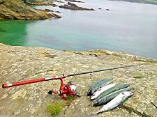 Travel Fishing Rod 2.1 m + Reel / FREE POSTAGE / PIKE,PERCH,POLLOCK,SPIN,FLOAT