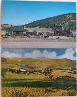 Vintage Old Molson Washington Postcards