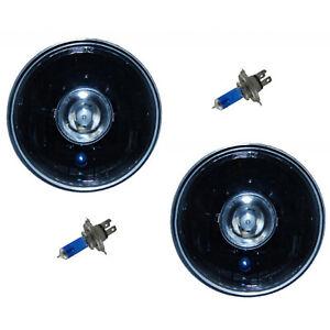 "7"" Black Projector Crystal Clear Halogen Headlight Lamp H4 55/60 Light Bulb Pair"