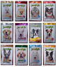 Jerhigh Milky Stick Many Flavored Dog Food Snack Pet Meals High Protein Energy