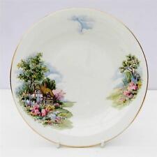 Vintage Bone China Country Cottage Garden Placa de té