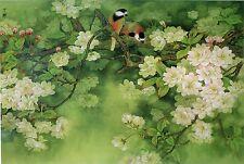 Chinese Flower Painting Feng Shui Love Birds Asian Wall Art Asian Decor