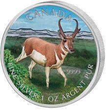 Tier & Natur Gedenkmünzen aus Kanada