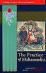 The Practice of Mahamudra by Chetsang, Drikung Kyabgon