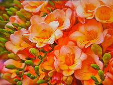 Mega® Jigsaw Puzzle ~ Vibrant Series ~ Bouquet of Yellow & Pink Flowers  New!