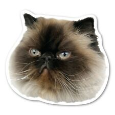 Himalayan Cat Magnet