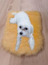 100% GENUINE Sheepskin PET BED Rug Seat Cover Pet Puppy Dog Cat Mat Relugan