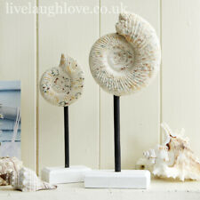 More details for set of 2 decorative ammonite faux shells on stands