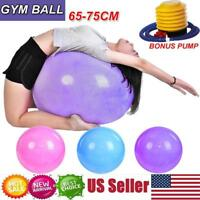 65/75 cm Yoga Ball Anti Burst Exercise Workout Stability with Air Pump