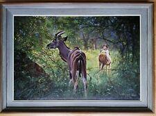 BARRY WALDING ORIGINAL OIL PAINTING NYALA AFRICAN ANTELOPE ANIMALS NATURE IN ART