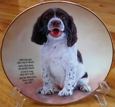 Danbury Mint Springer Spaniel Adoring Eyes Limited Edition Plate