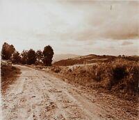 Francia Route Paesaggio Foto Stereo PL58L10n10 Placca Da Lente c1920