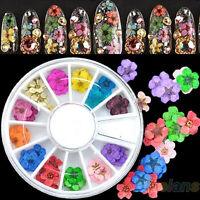 EG_ 36Pcs 3D Nail Art Sticker Dried Flower DIY Tips Acrylic Decoration Wheel BC4