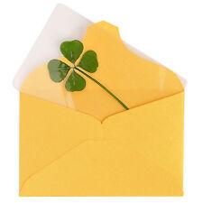 Real 4 Four Leaf Clover Bookmark Card Sleeves Irish Shamrock Lucky Charm Amulet