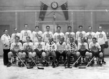 NHL 1931-32  Toronto Maple Leafs Team Photo Stanley Cup Champions 8 X 10 Photo