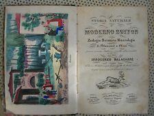 STORIA NATURALE BUFFON 21TAVOLE ACQUARELLATE A COLORI BOTANICA PIANTE FIORI 1853