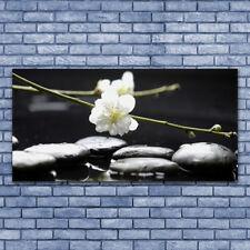 Glasbilder Wandbild Druck auf Glas 140x70 Blumen Steine Kunst