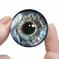 Large Glass Eyes Steampunk Sci-fi Taxidermy Eyeball Craft Set 35mm