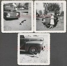 Vintage Photos Pretty Girl w/ Cat & Dog 1948 1949 1950 Ford Pickup Truck 682770