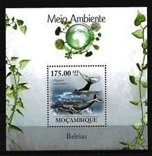 Mozambique 2010 baleines bloc n° 237 neuf ** 1er choix