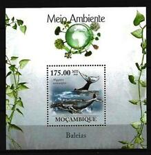 Mozambique 2010 whales bloc n° 237 new 1st choice