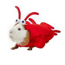 Lobster Small Animal Guniea Pig Halloween Costume