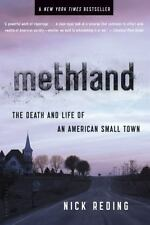 Methland : The Death and Life of an American Small Town by Nick Reding (2010, P…