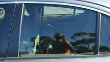 JAGUAR X TYPE LEFT REAR DOOR WINDOW/ GLASS 09/01-12/10