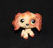 Littlest Pet Shop Cream & Brown COCKER SPANIEL No LPS# GREEN Eyes PUZZLE Honey