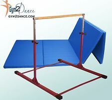 Gymnastics Bar and Mat Combo, Barney Purple Adjustable Bar and 8' x 4' Blue Mat