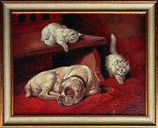 Cane BULLDOG FRANCESE americano OLIO gatti 30 x 40 cm animale pittore per anni 1900/1920er
