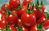 50 Graines de Tomate Cerise Rouge Méthode BIO seeds plantes légumes potager