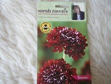 JOHNSONS SEEDS  SARAH RAVEN CUT  FLOWER  SCABIOUS BLACK KNIGHT SEED