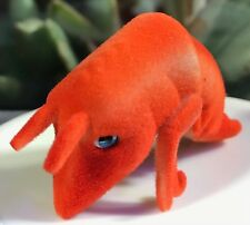 Jungle Ocean Sea in My Pocket—Shrimp, Coraline