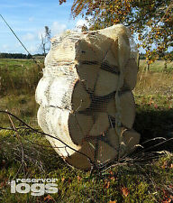 12 Large Nets Kiln Dried Hardwood Logs SILVER BIRCH Bulk Bag Amount